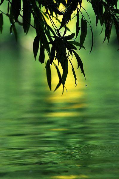 Emerald river