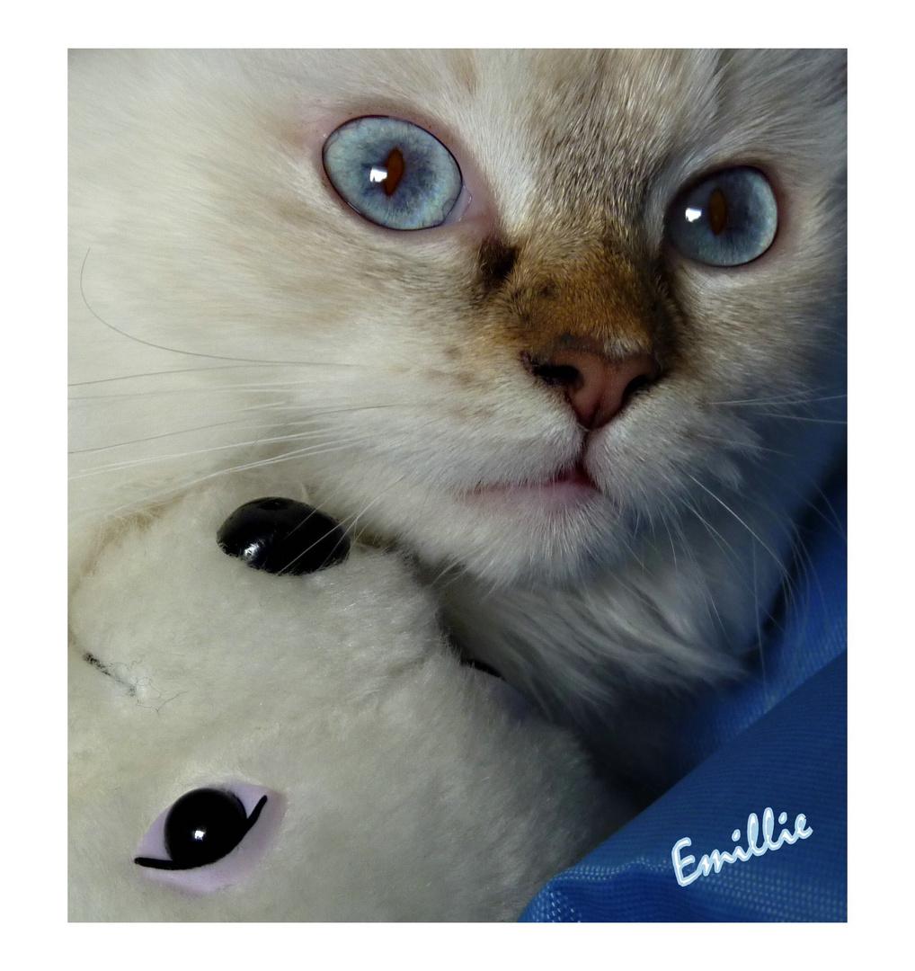 Emillie.........