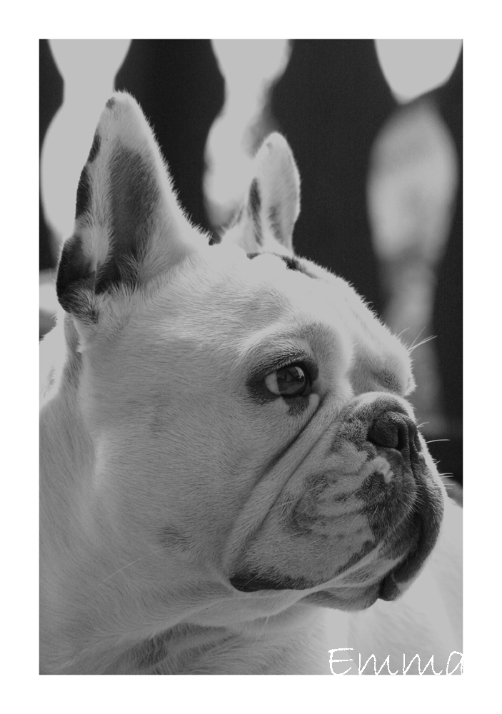 Emma black&white