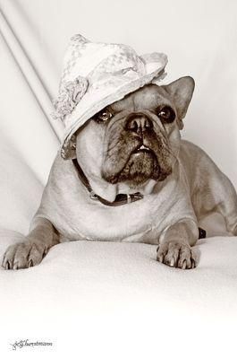 Emma und der Hut!..