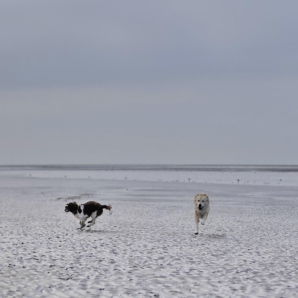 Emma und Nando am Strand