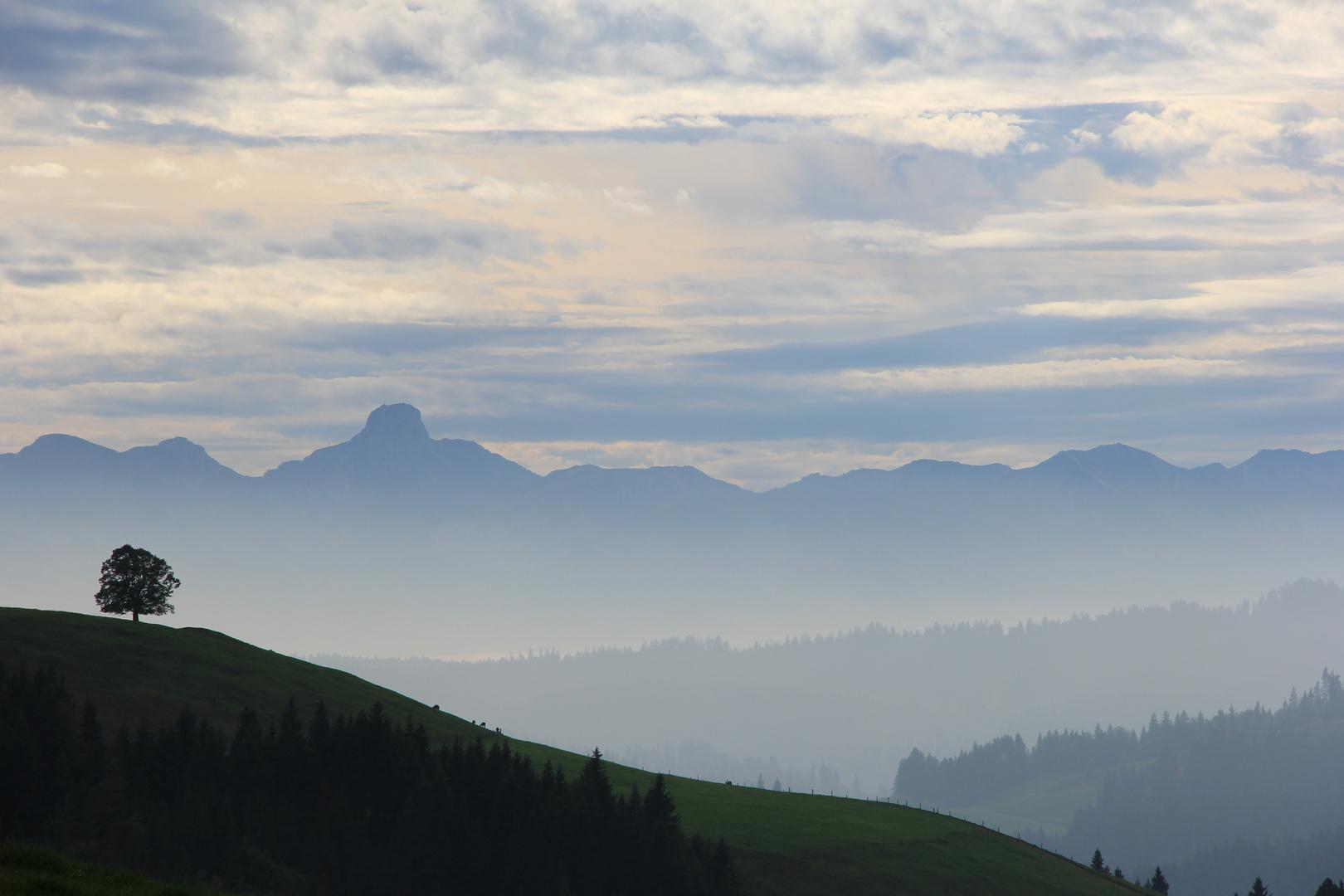 Emmental im Nebel