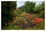 Emmetts Garden *1