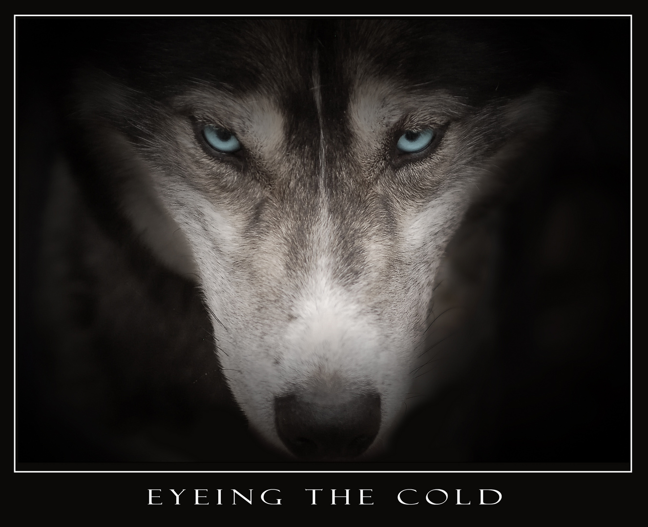 Emmitt - Eyeing The Cold