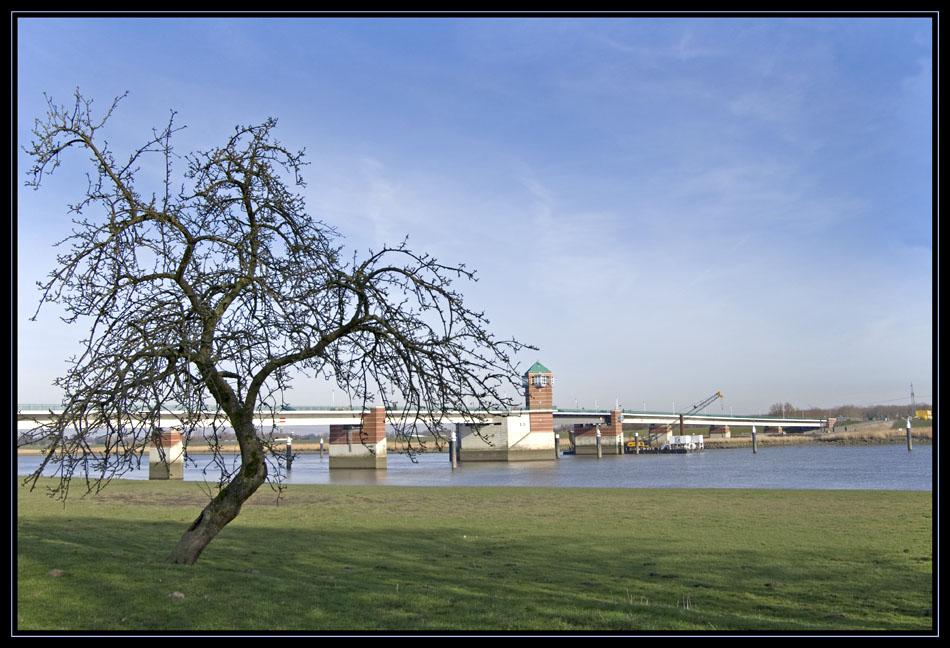Emsbrücken Z-Tree