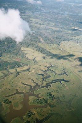 En alguna parte sobre Amazonia