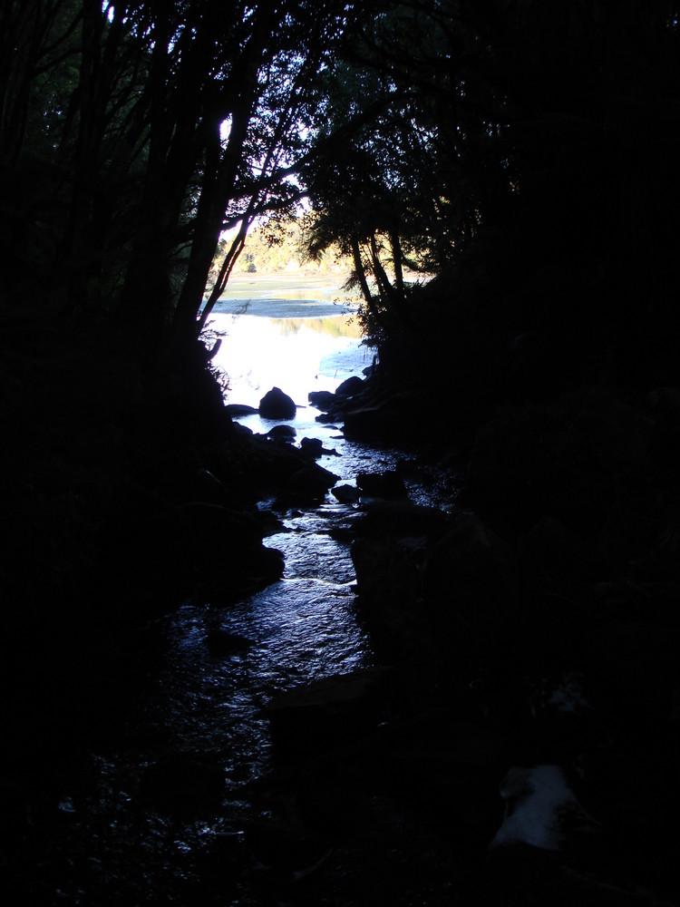 En avant vers la lumière