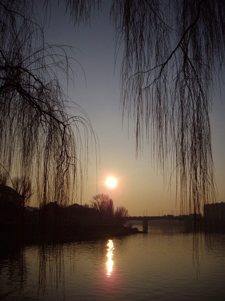 En bord de Saône ...