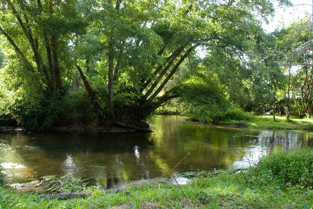 en bordure de rivière !!
