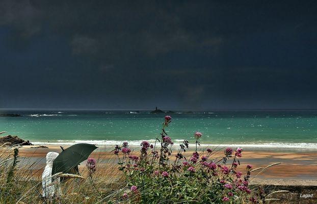 En Bretagne, les fleurs vont jusqu'à la mer......