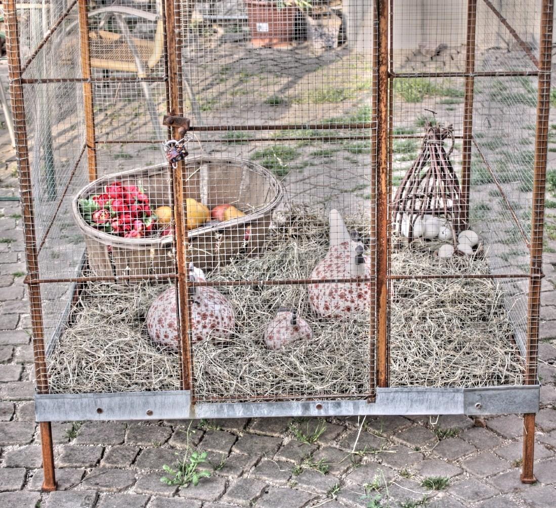 """""""En cage..."""""""