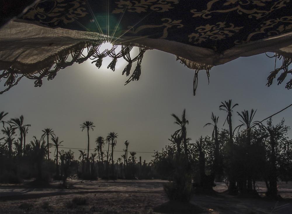 En calesa por Palmeraie Village Residence (Marrakech Marruecos)