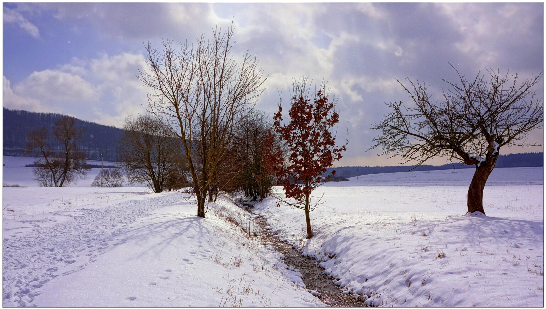 en el camino al lago (auf dem Weg zum See)