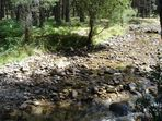 en el rio