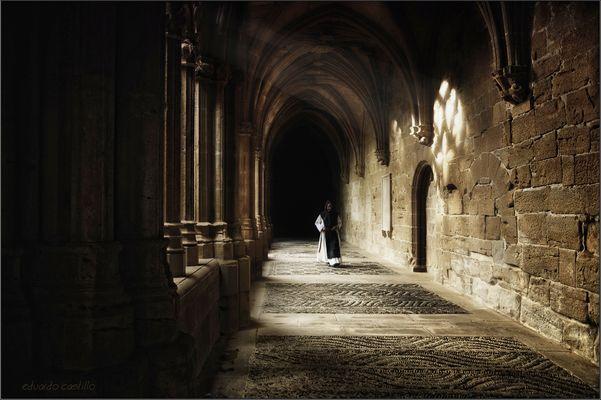 En el silencio de la luz