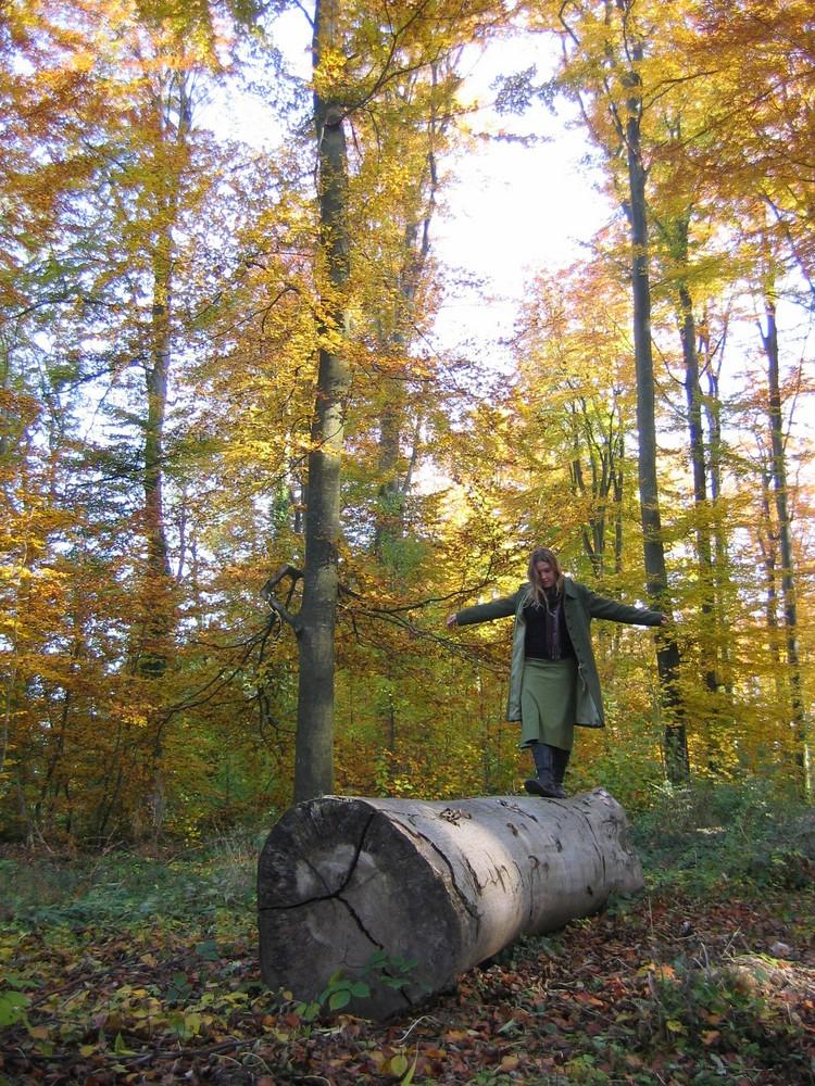 En forêt, je m'amuse...