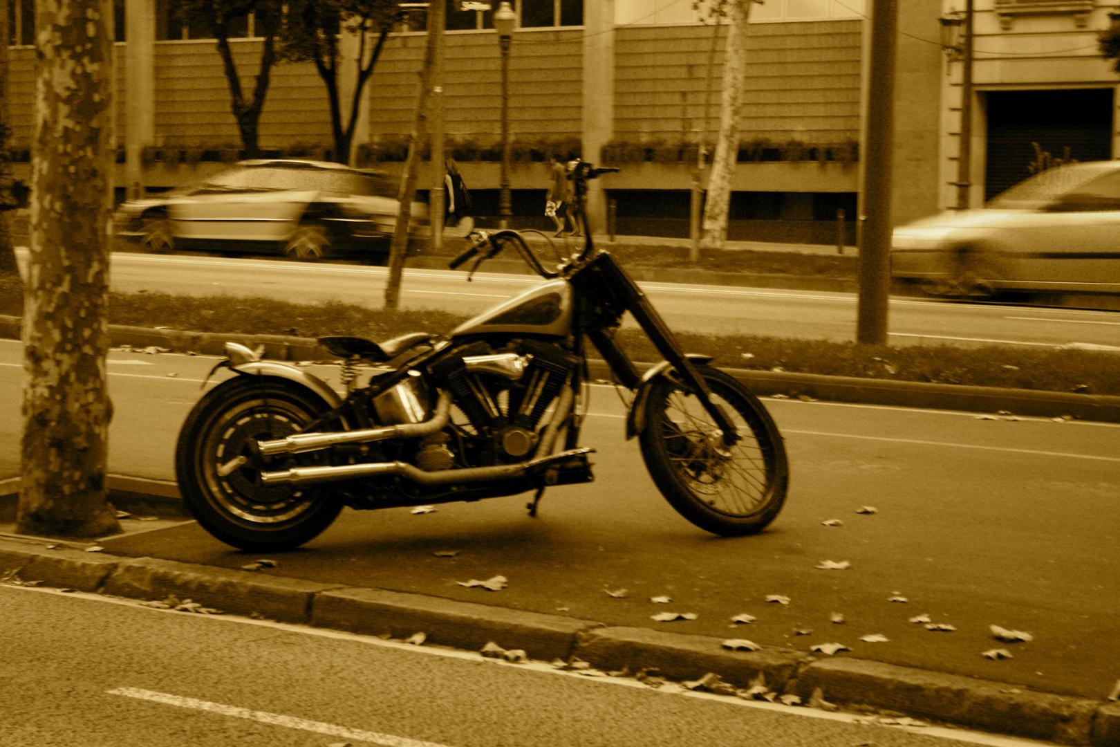En Harley davidson