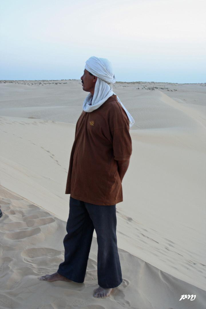 en haut de sa dune, il surveille le désert