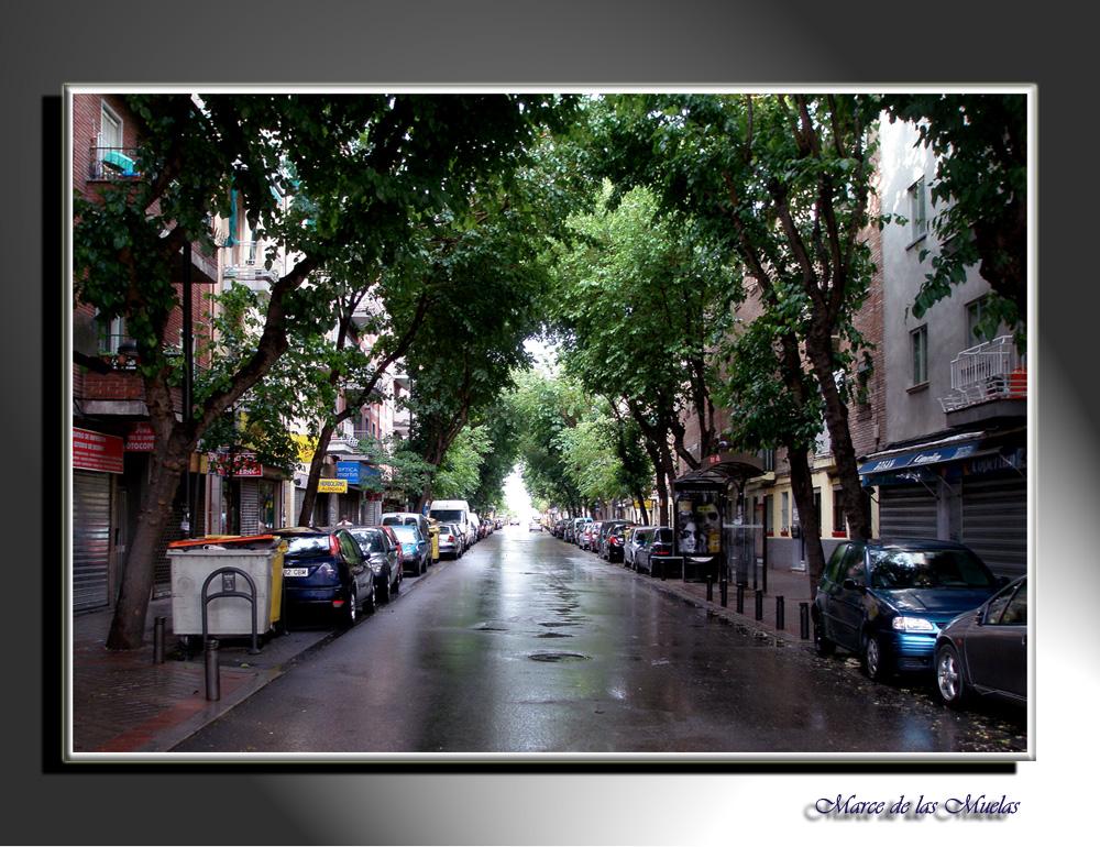 En la calle donde vivo..