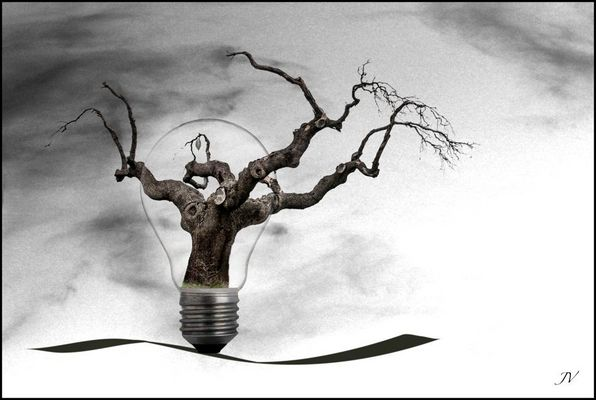 .. en la luz