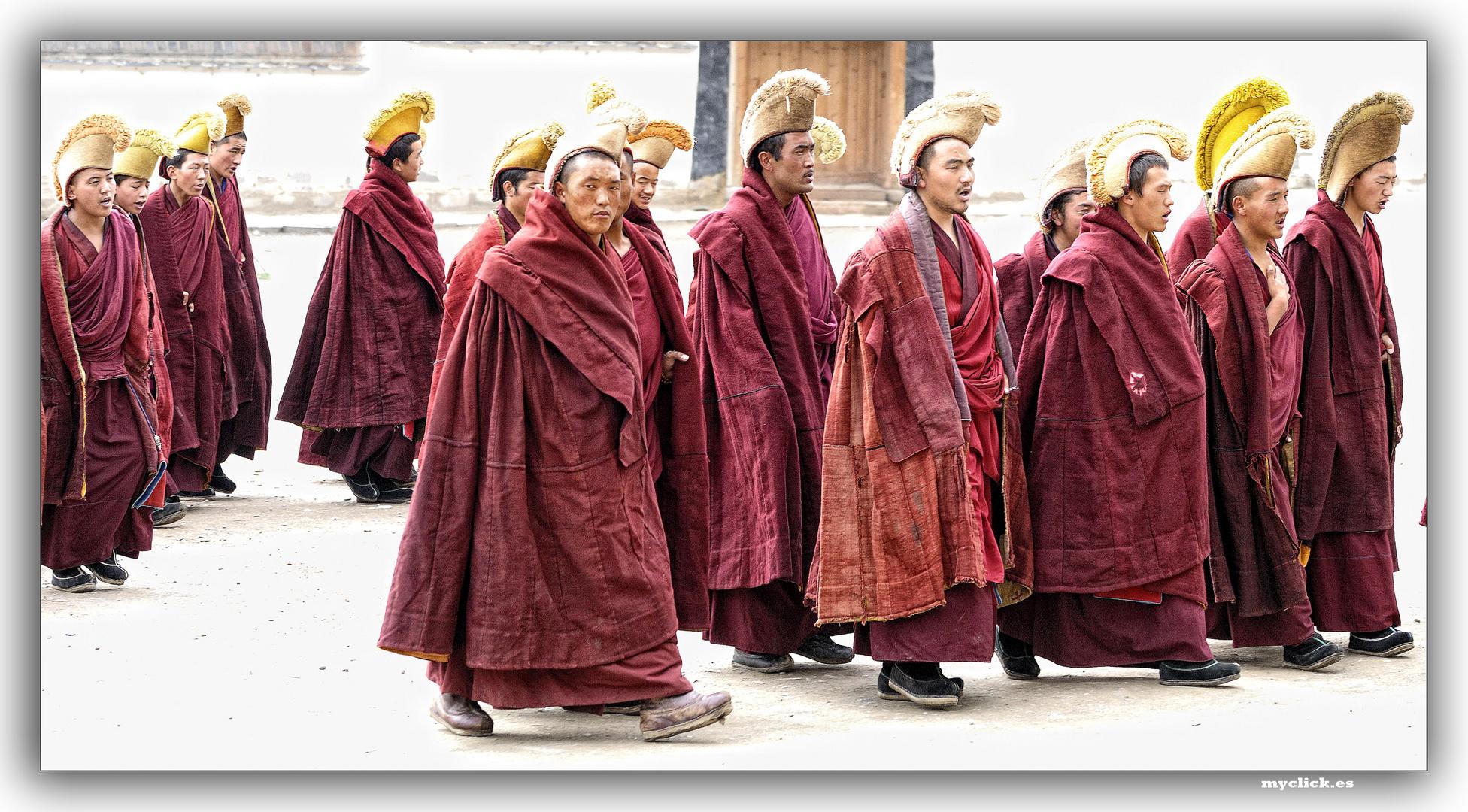 EN LA RUTA DE LA SEDA-MONJES BUDISTAS ACUDEN A LAS ORACIONES DEL MEDIODIA-M. LABRANG