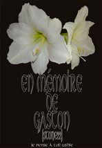 en mémoire de Gaston