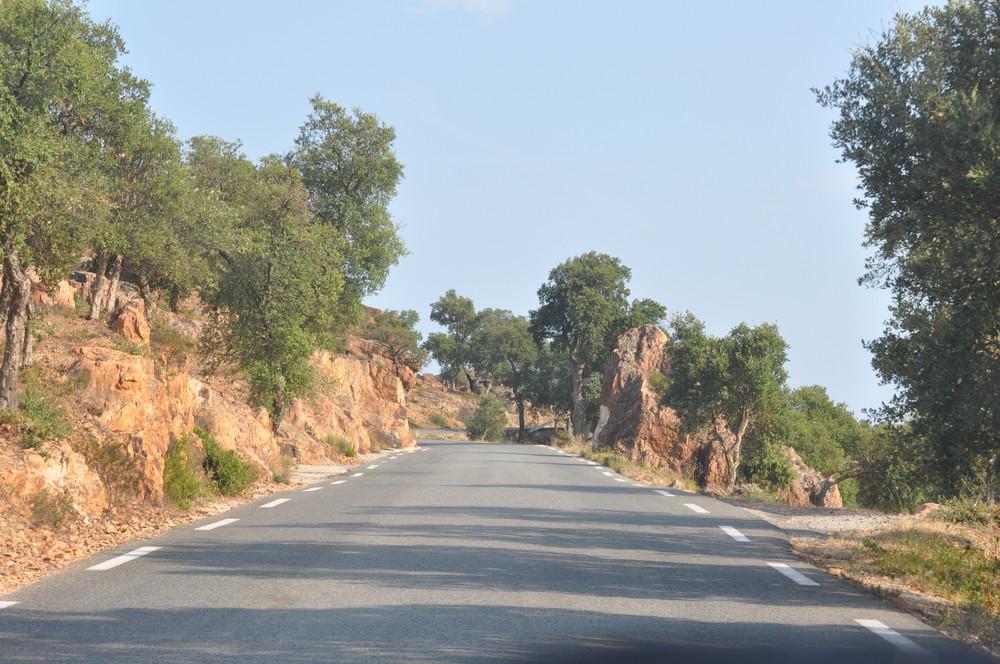 En promenade dans le massif des Maures