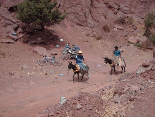 En route pour la Vallée de l'Ourika