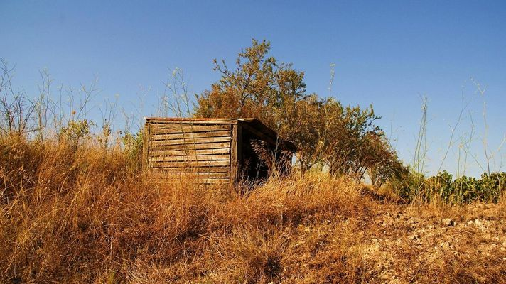 En route pour le passé avec la cabane en bois de notre enfance !!!
