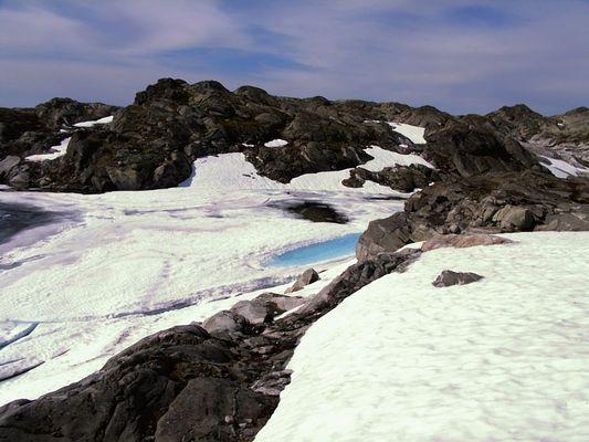 ende juli auf einem berg neben dem folgefonna-gletscher, hardanger, norwegen