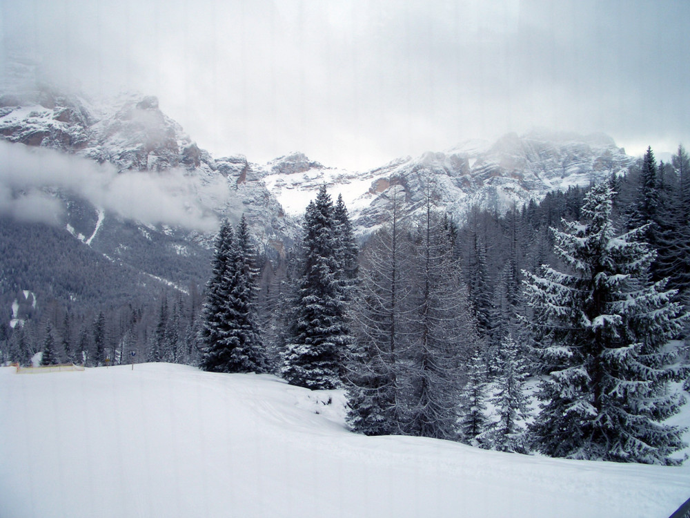 [ Endless Winter ]