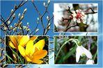 ..endlich ein erster Frühlingstag
