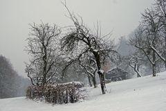 Endlich mal wieder richtig Schnee