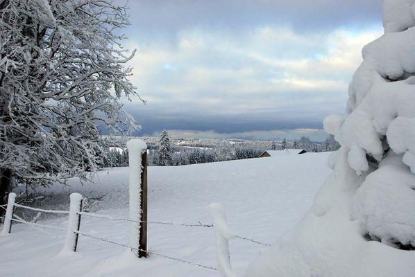 Endlich Schnee (2)