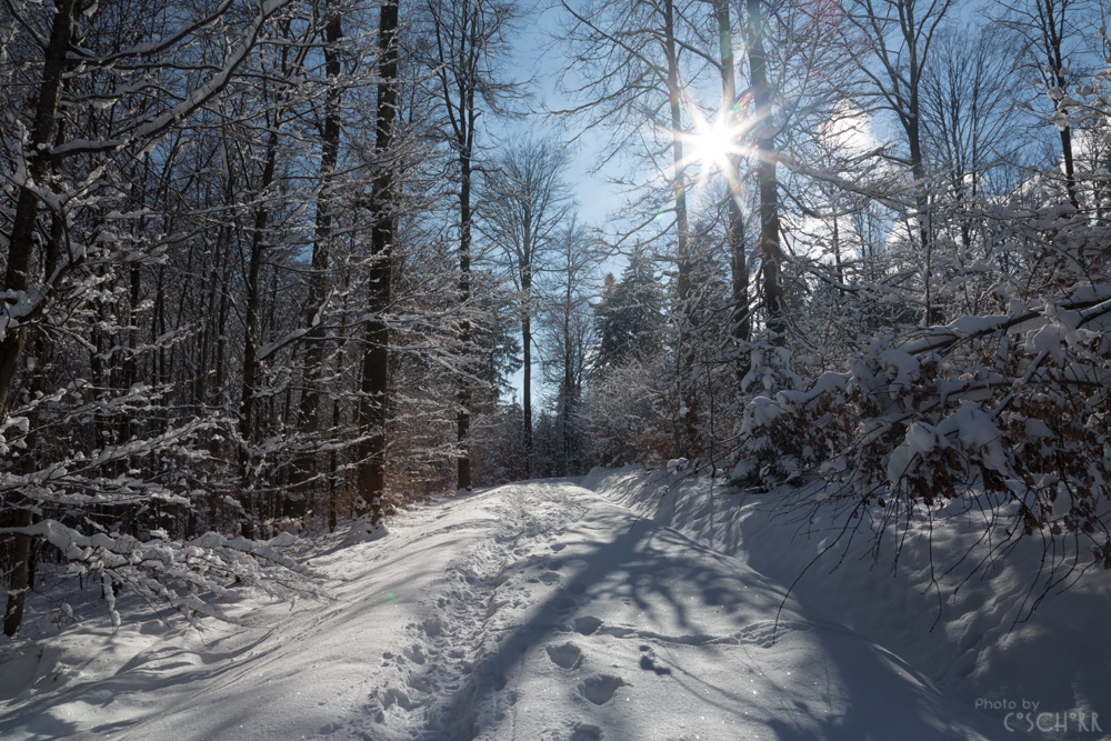 Endlich Schnee UND Sonne!