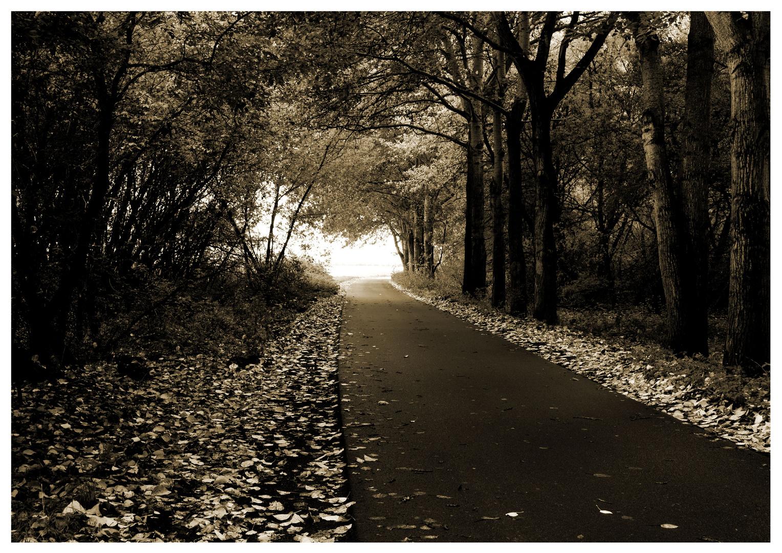 Endlich wieder Herbst