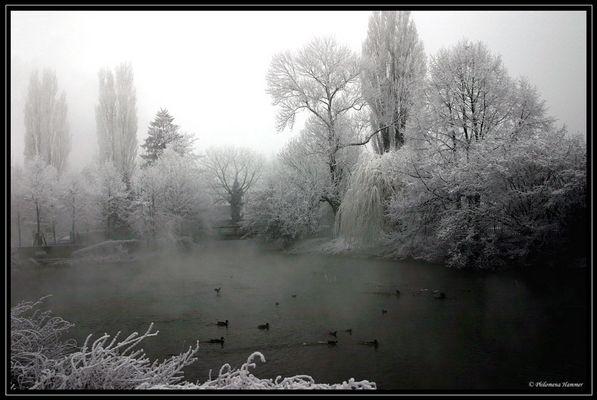 Endlich Winter 7