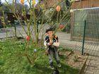 Endlich wird der Ostereierbaum wieder geschmückt