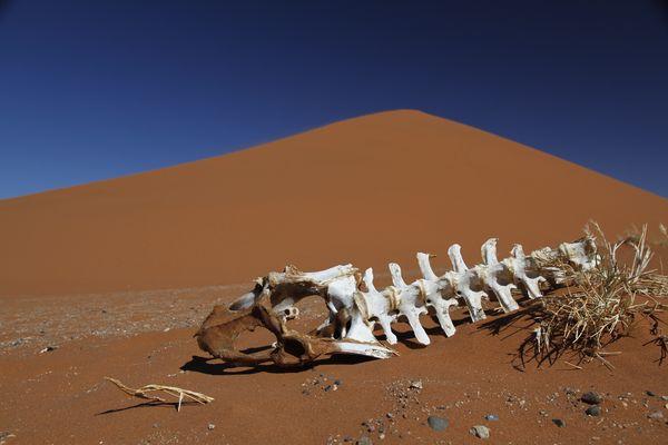 Endstation Dune 45