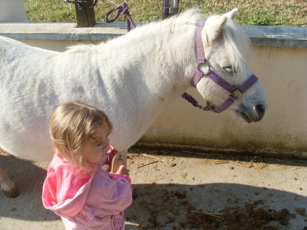 enfant au poney