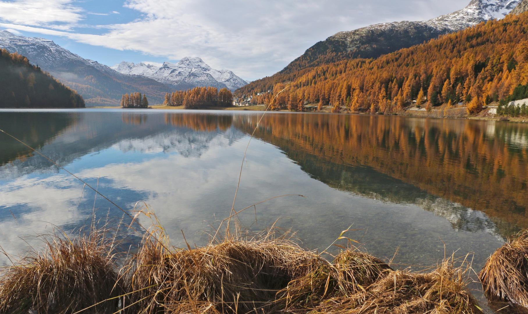 Engadin: goldener Herbst...