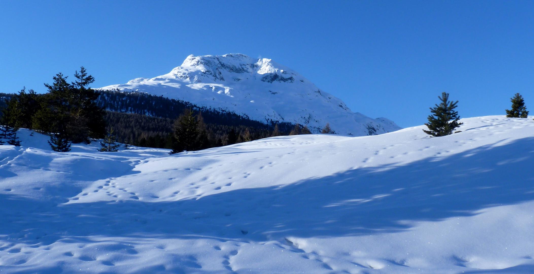 Engadin = und sein blauer Himmel / Y su cielo azul / Et son ciel bleu...17