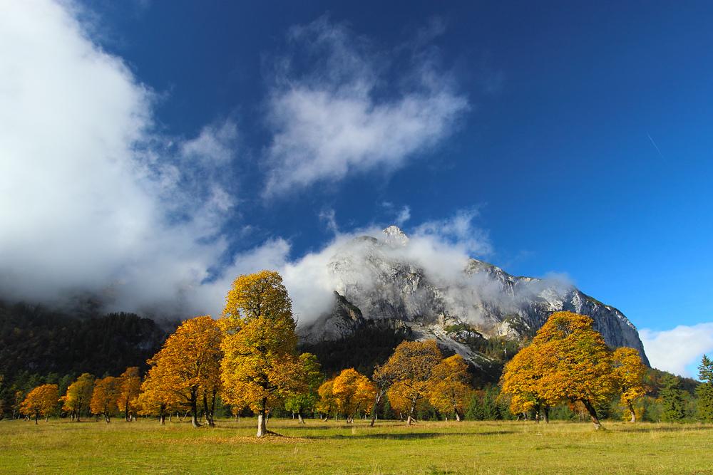 Engalm im Karwendel