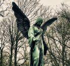 Engel #1