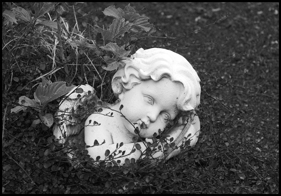 Engel auf den Friedhof...