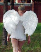 Engel auf Erden...