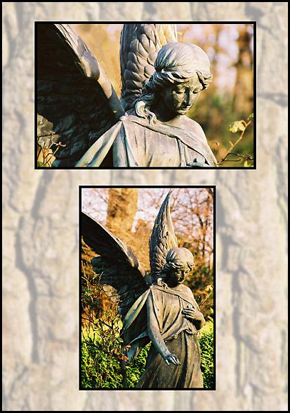 Engel auf Melaten 03