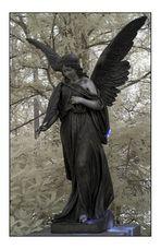 ~Engel der Stille~