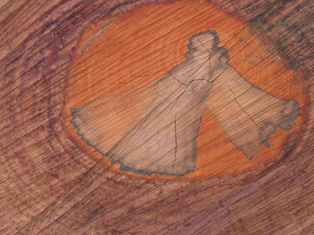 Engel im Holz
