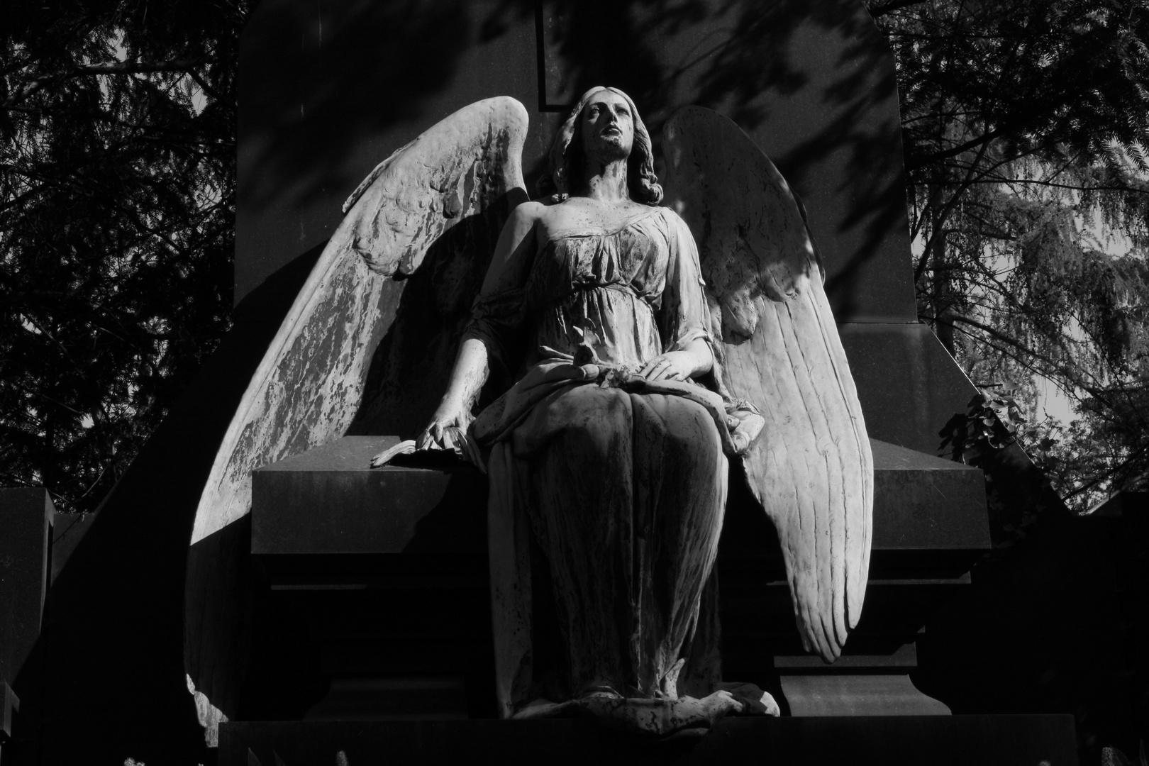 Engel im Melaten....